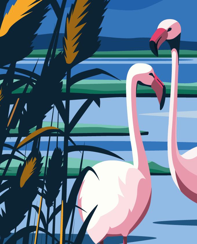 flamingos cagliari architecture summer sardinia room wall art interior design vintage travel posters places pink sardinia